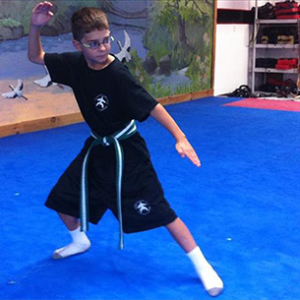 Martial Arts for Children - Camp - Forms 3 - Vermont